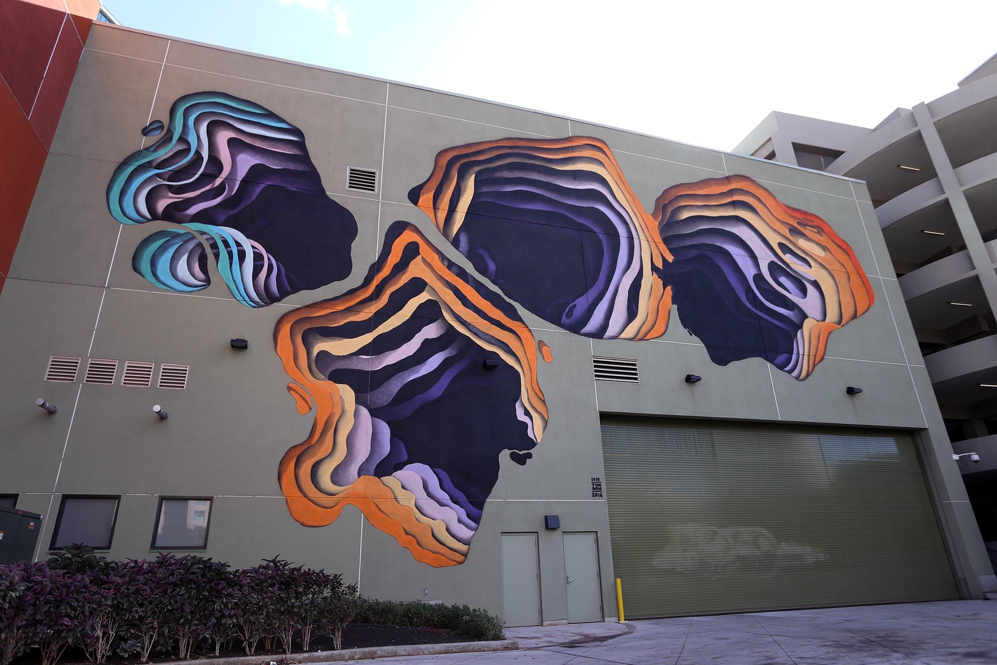 1010-festival-pow-wow-mural-grafite-dionisio-arte (7)