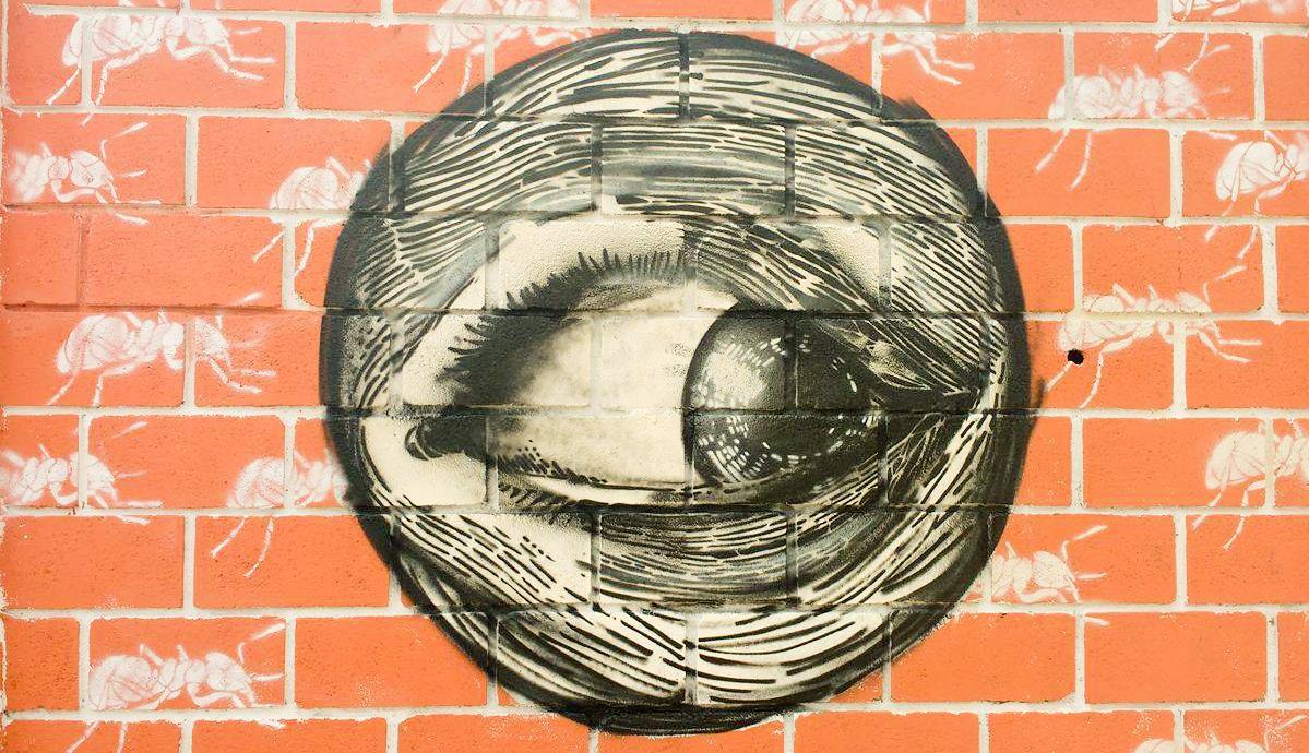 tom-pina-stencil-dionisio-arte-23