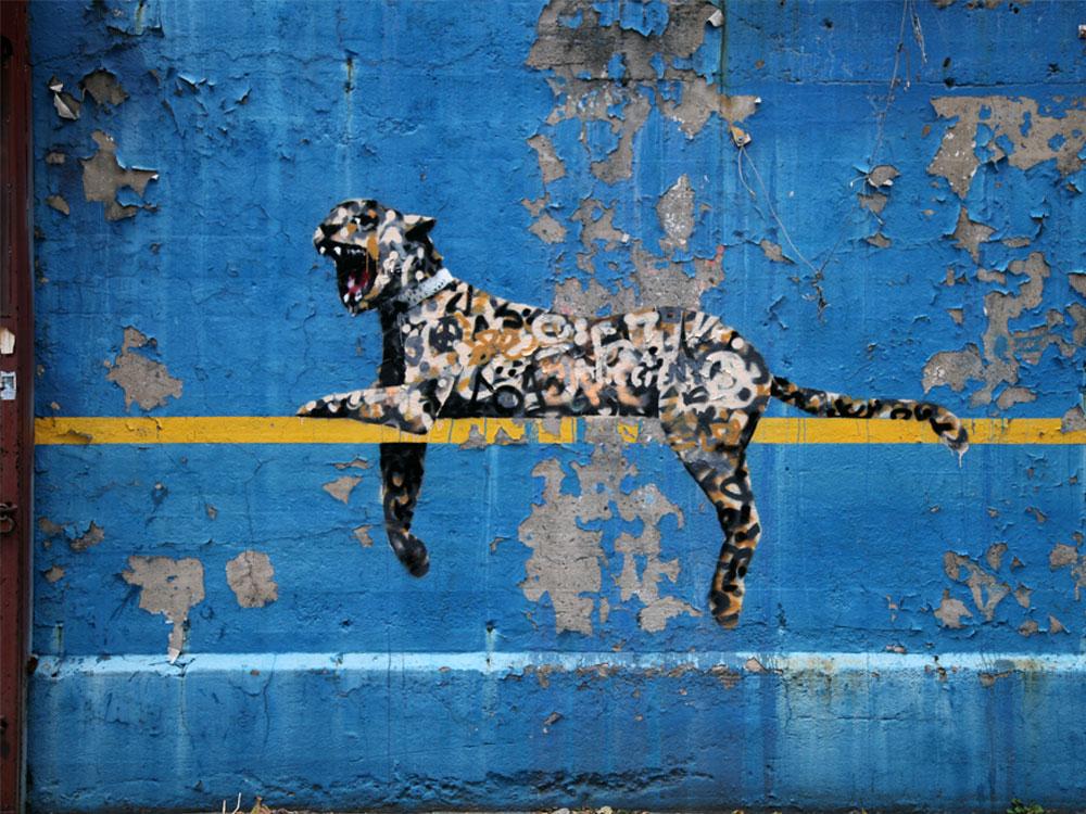 banksy arte de rua graffiti (17)