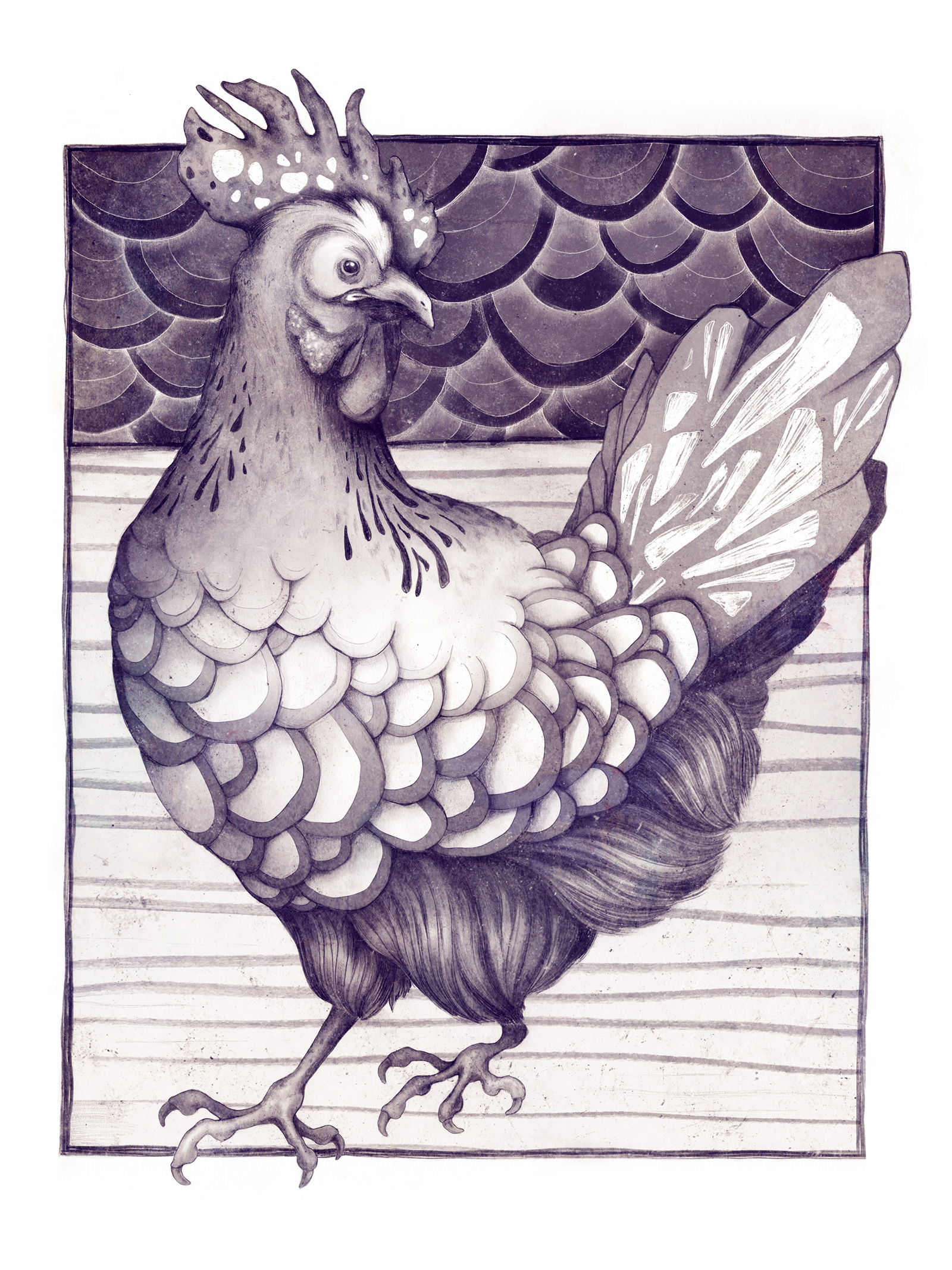 sara-blake-zso-ilustracao-design-arte-3