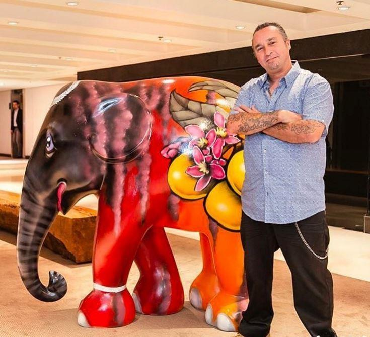 elephant parade 2017 sao paulo binho ribeiro