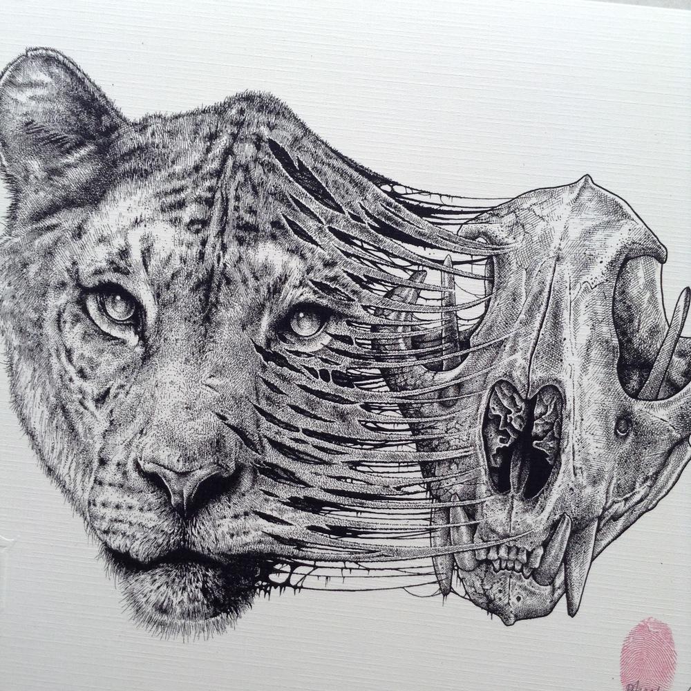 paul-jackson-ilustracao-desenho-dionisio-arte-05