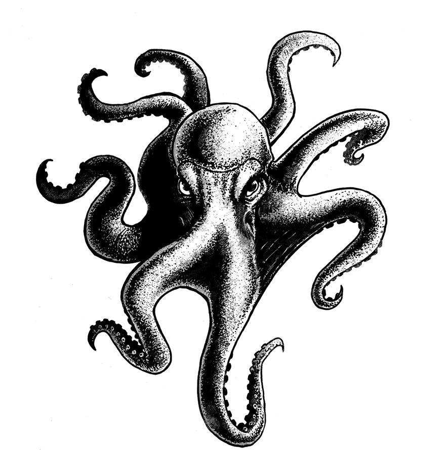 sergio-duarte-designer-ilustrador-santos-dionisio-arte-23