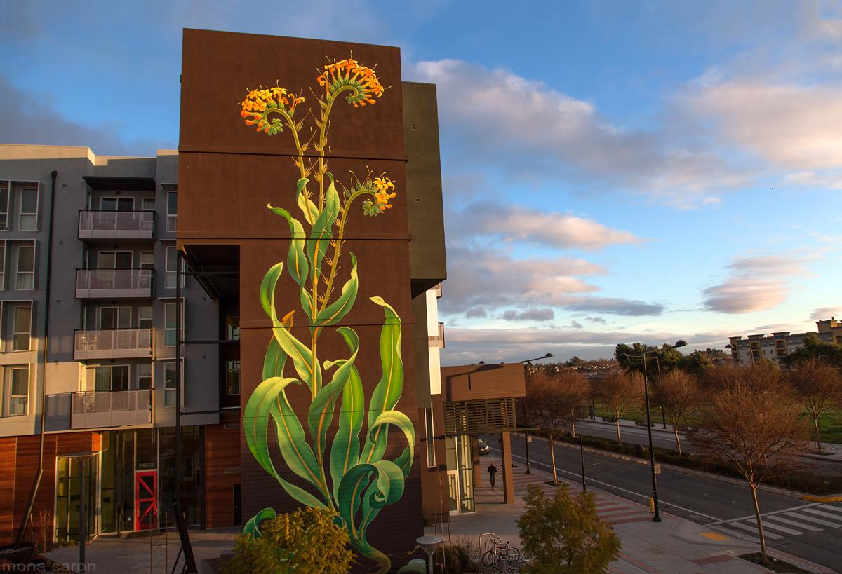 mona caron graffiti mural weeds (18)