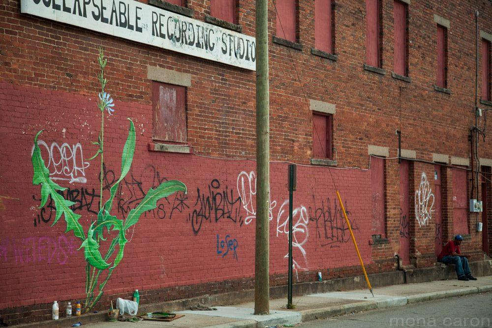 mona caron graffiti mural weeds (28)
