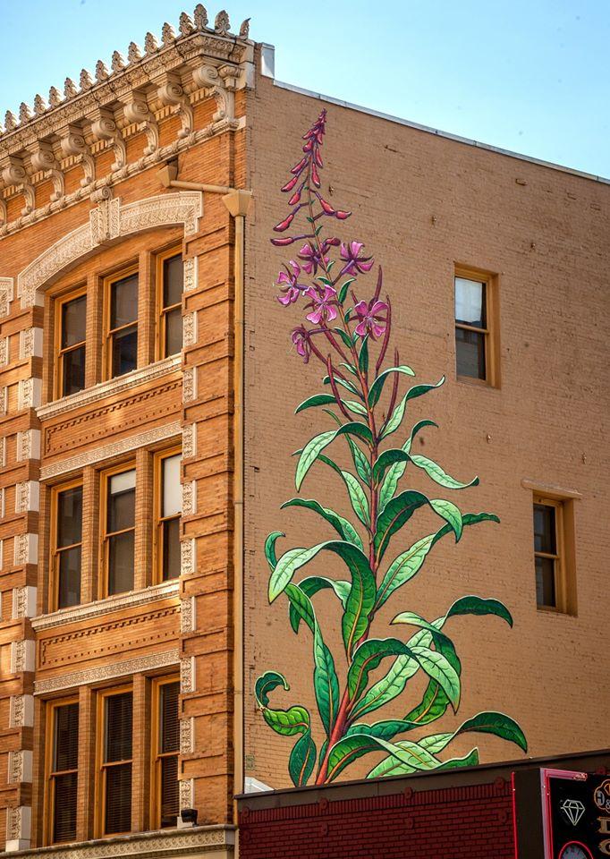 mona caron graffiti mural weeds (8)