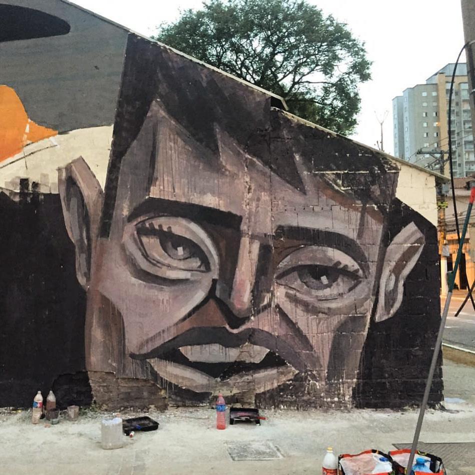 ronah-carraro-graffiti-pintura-ilustração-13